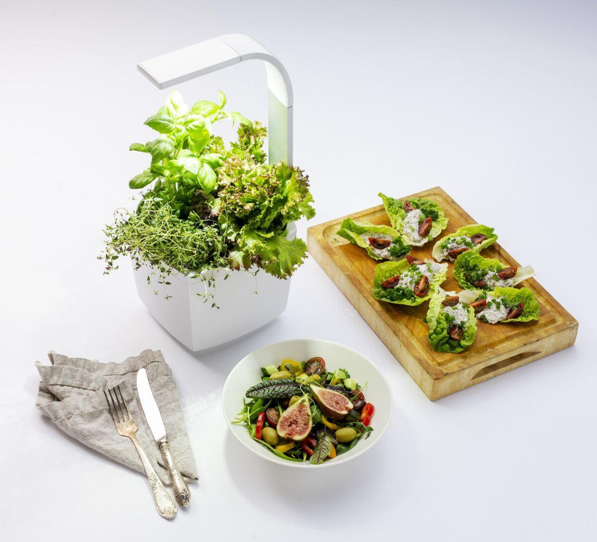 Tregren Pametni vrt za avtomatizirano gojenje zelenjave in začimb