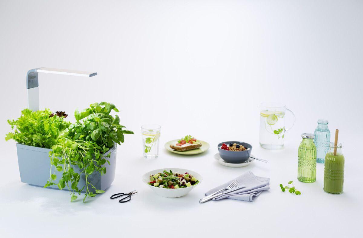 Pametni vrt za zelišča in zelenjavo