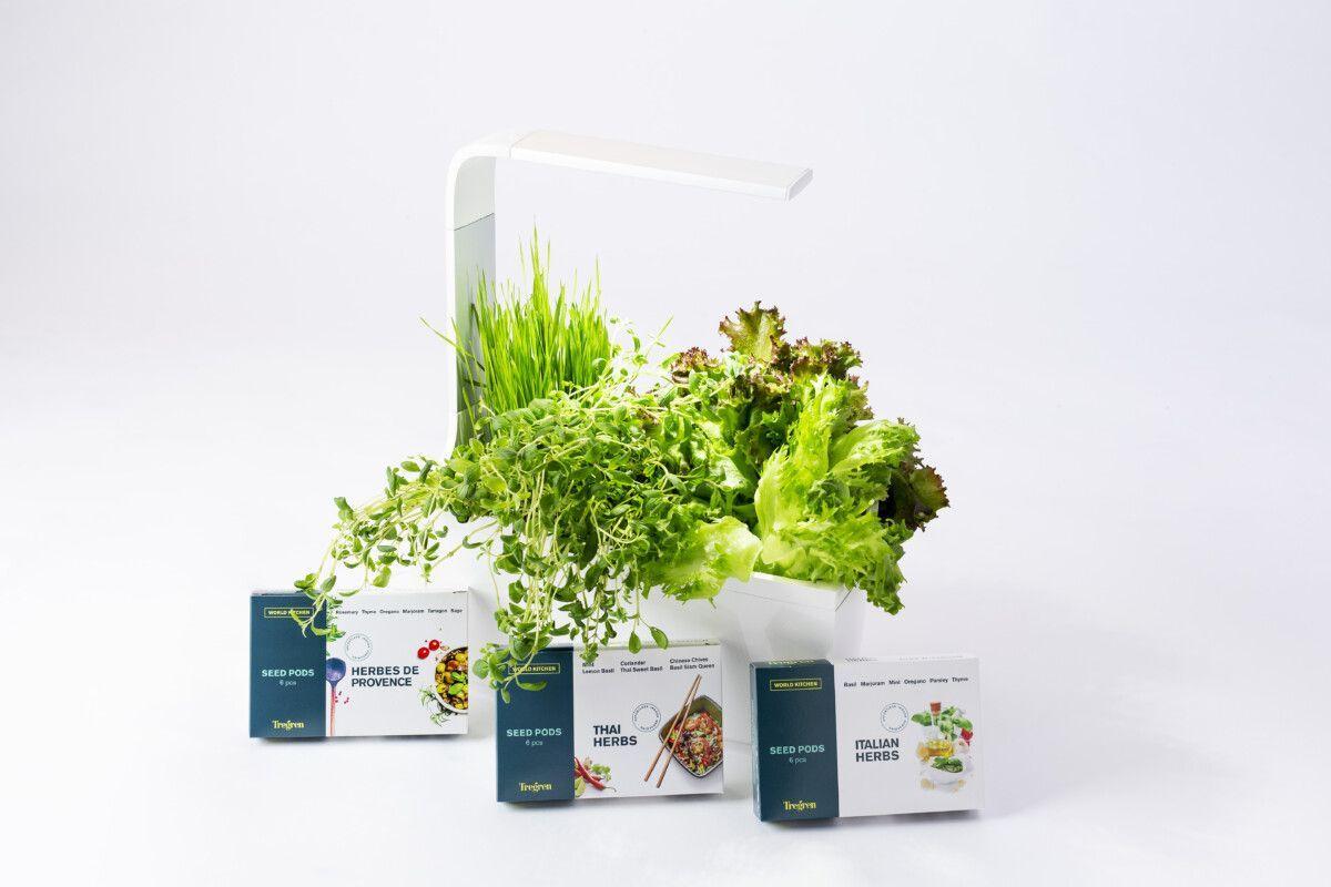 Pametni vrt za gojenje zelišč - TREGREN