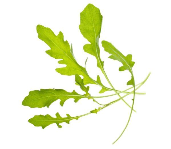 semena-za-pametni-vrt-rukola-1