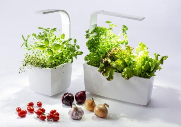 Tregren pametni kuhinjski vrt T3