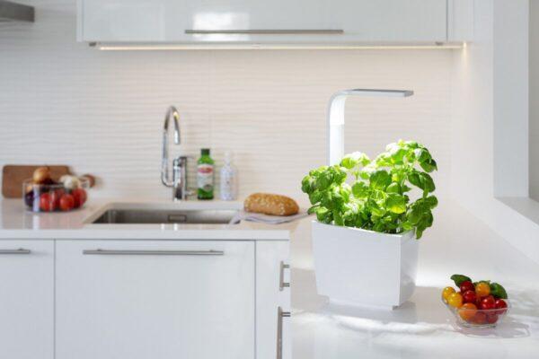 Tregren pametni kuhinjski vrt T6