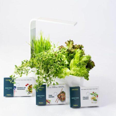 Semena za kuhinjske vrtičke