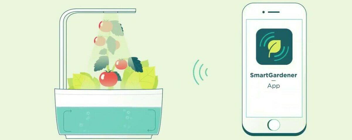 S pomočjo hidproponike lahko na preprost način gojite zelišča, zelenjavo ali rože kar v prostorih svojega doma - SmartGarden aplikacija