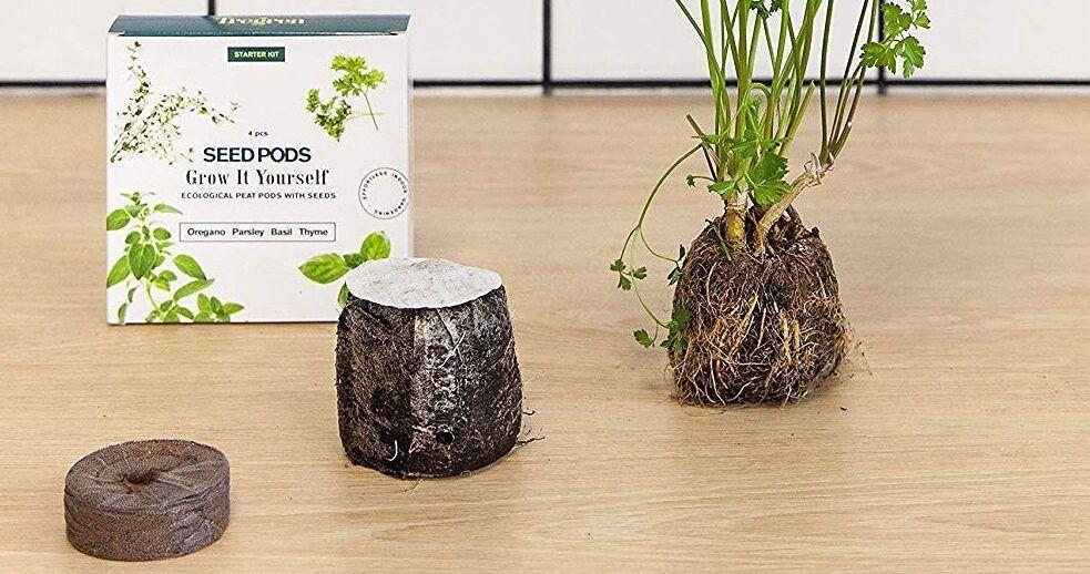S pomočjo hidproponike lahko na preprost način gojite zelišča, zelenjavo ali rože kar v prostorih svojega doma - šotna tableta